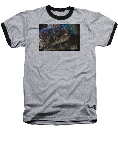 Reticulated Python With Rainbow Scales Baseball T-Shirt