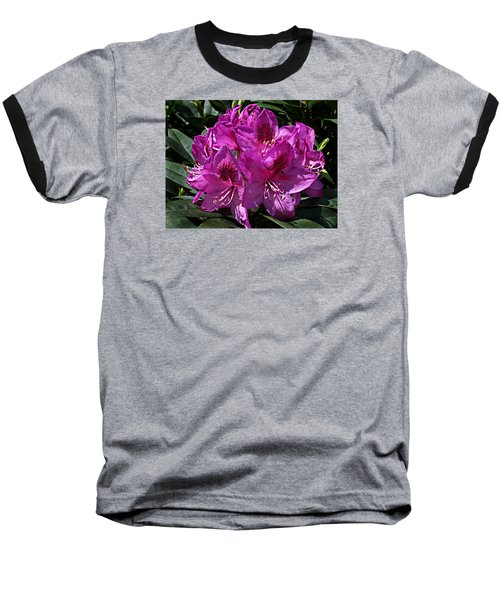Rhododendron ' Anah Kruschke ' Baseball T-Shirt by William Tanneberger