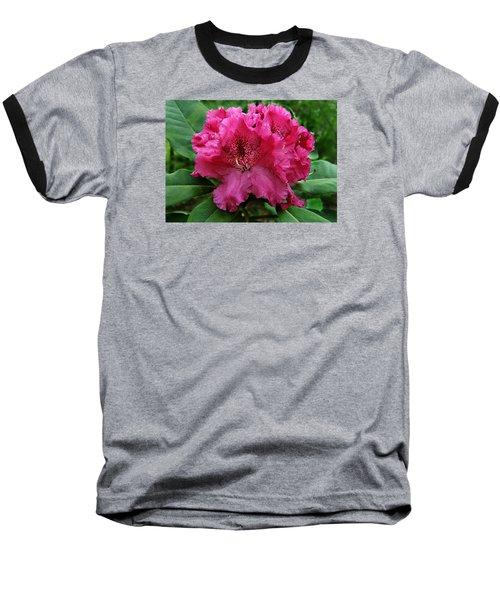 Rhododendron ' Bessie Howells ' Baseball T-Shirt by William Tanneberger