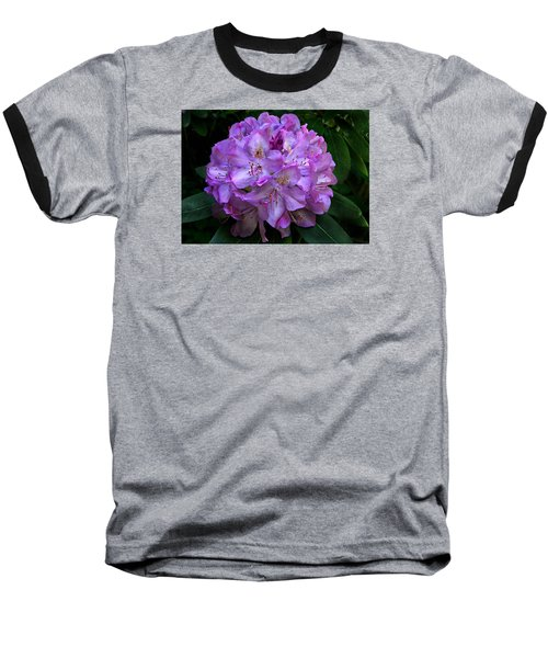 Rhododendron ' Roseum Elegans '  Baseball T-Shirt by William Tanneberger