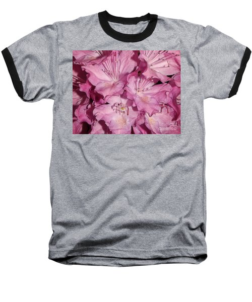 Rhododendron Bliss Baseball T-Shirt by Sara  Raber