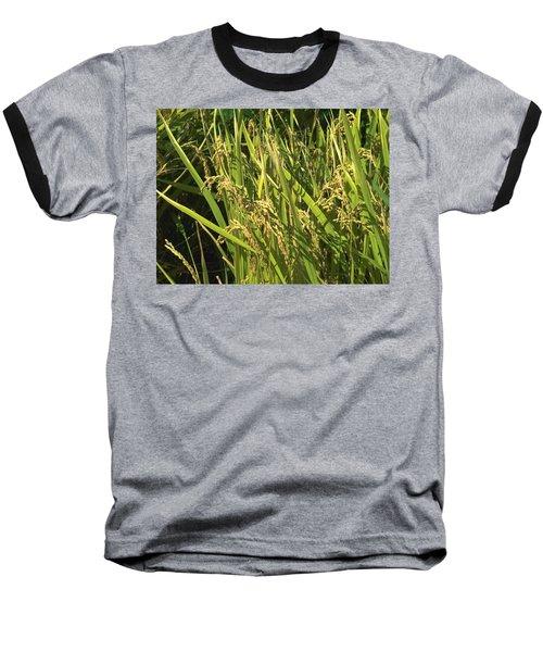 Baseball T-Shirt featuring the photograph Rice by Rachel Mirror