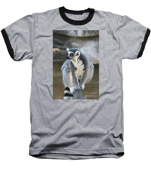 Baseball T-Shirt featuring the photograph Ring-tailed Lemur #3 by Judy Whitton