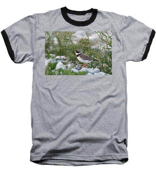Ringed Plover On Rocky Shore Baseball T-Shirt