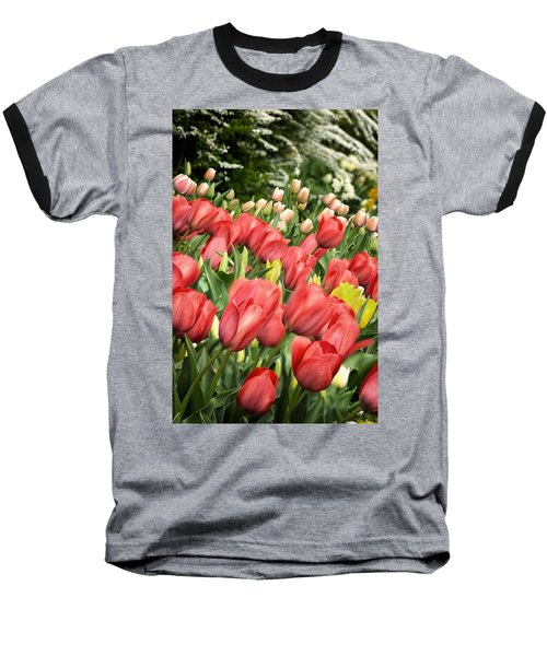 Rising Spring Baseball T-Shirt