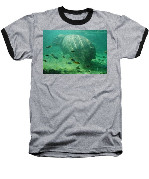 Baseball T-Shirt featuring the photograph River Horse by David Nicholls