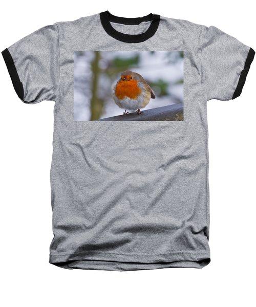Robin 1 Baseball T-Shirt