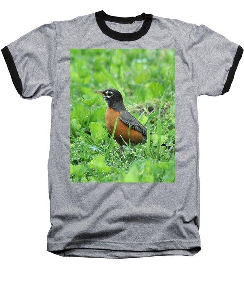 Robin 370 Baseball T-Shirt