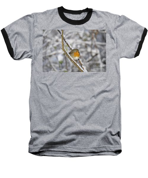 Robin At Winter Baseball T-Shirt