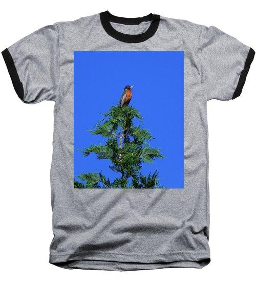 Robin Christmas Tree Topper Baseball T-Shirt