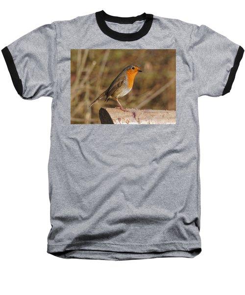 Robin On A Log -2 Baseball T-Shirt