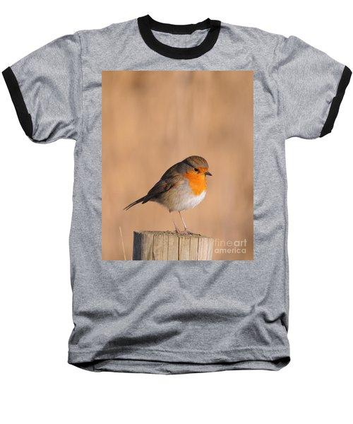 Robin Baseball T-Shirt