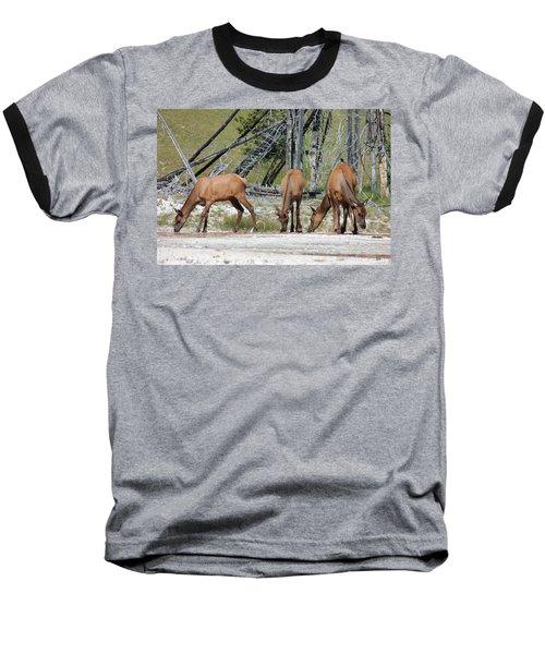 Rocky Mountain Elk Baseball T-Shirt