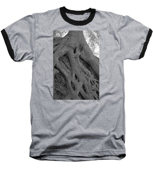 Roots II Baseball T-Shirt by Suzanne Gaff