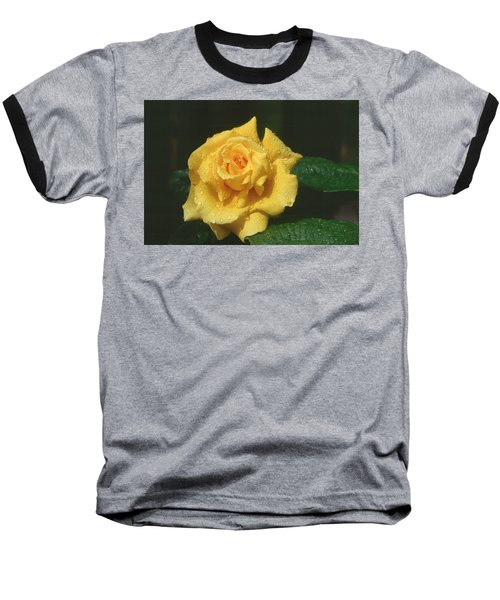 Rose 1 Baseball T-Shirt