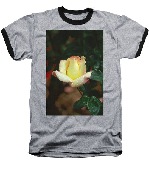 Rose 3 Baseball T-Shirt