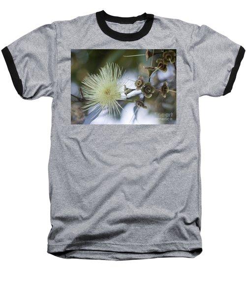 Rose Apple Blossom Baseball T-Shirt
