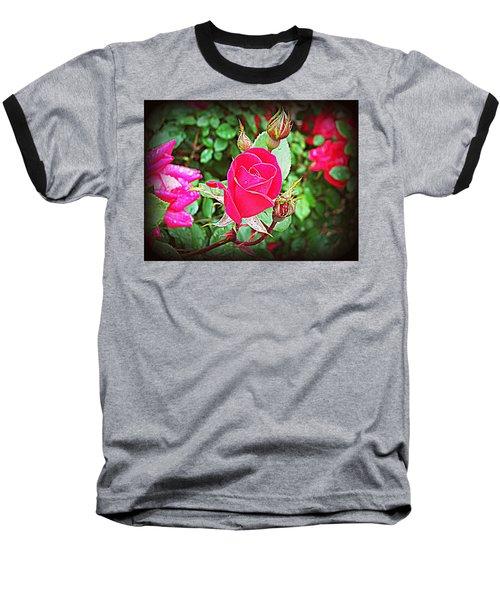Rose Garden Centerpiece 2 Baseball T-Shirt