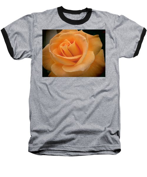 Baseball T-Shirt featuring the photograph Rose by Laurel Powell