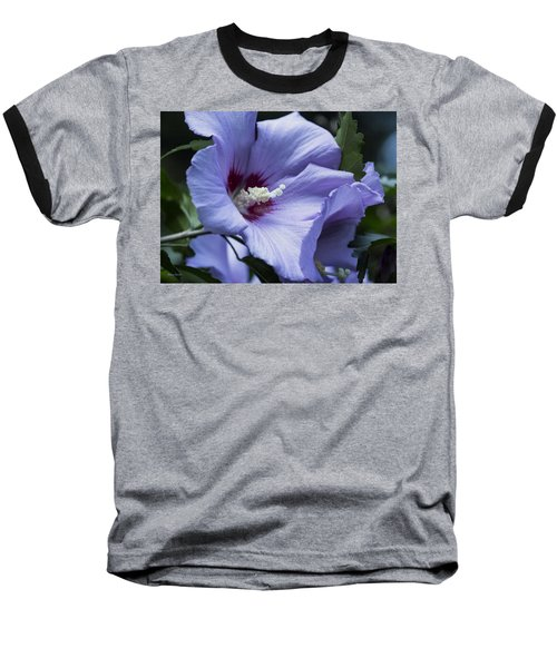 Rose Of Sharon Baseball T-Shirt