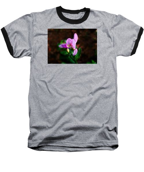 Rose Pogonia Orchid Baseball T-Shirt by William Tanneberger