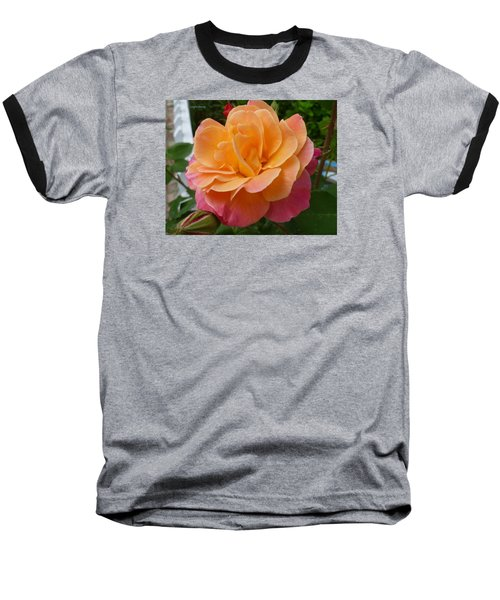 Baseball T-Shirt featuring the photograph Rosemary And Thyme by Lingfai Leung