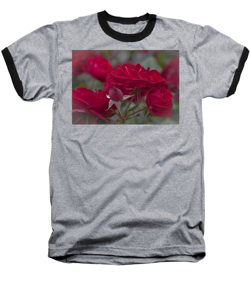 Roses And Roses Baseball T-Shirt by Maj Seda