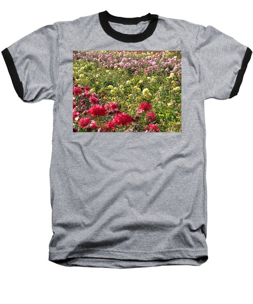 Baseball T-Shirt featuring the photograph Roses Roses Roses by Laurel Powell