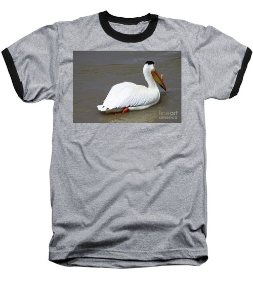 Rough Billed Pelican Baseball T-Shirt by Alyce Taylor