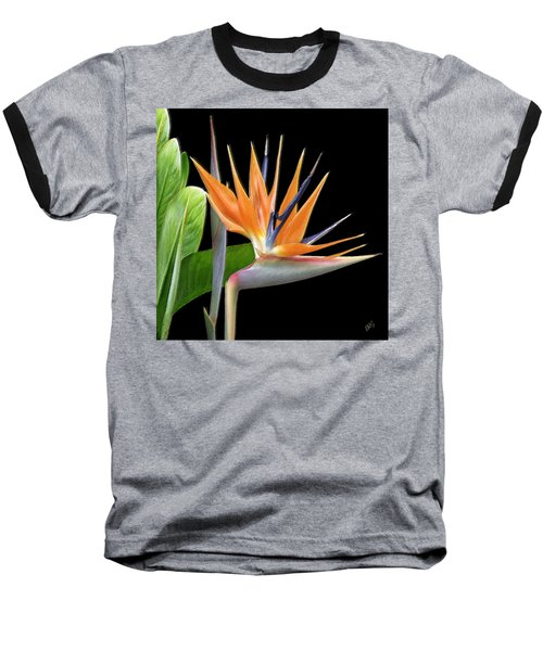 Royal Beauty I - Bird Of Paradise Baseball T-Shirt by Ben and Raisa Gertsberg