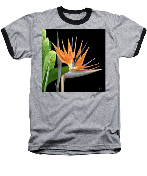 Royal Beauty I - Bird Of Paradise Baseball T-Shirt