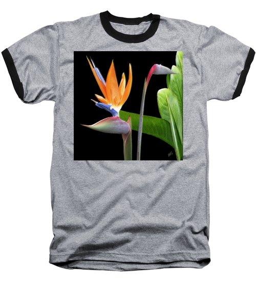 Royal Beauty II - Bird Of Paradise Baseball T-Shirt by Ben and Raisa Gertsberg