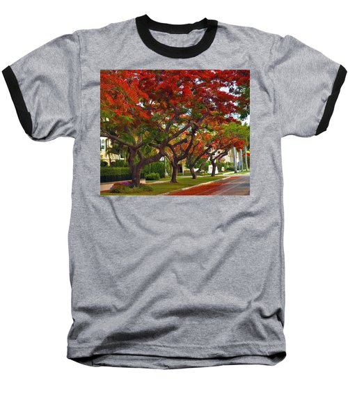 Royal Poinciana Trees Blooming In South Florida Baseball T-Shirt