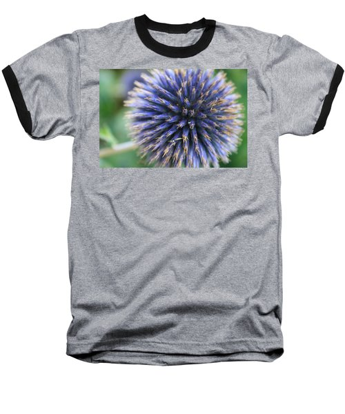 Royal Purple Scottish Thistle Baseball T-Shirt