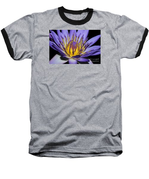 Royal Purple Water Lily #5 Baseball T-Shirt by Judy Whitton