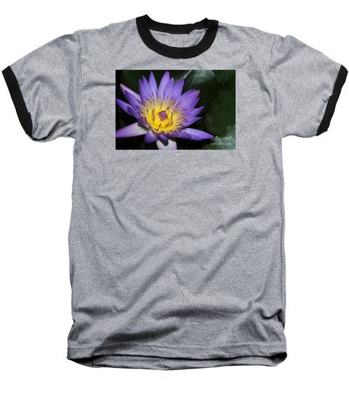 Royal Purple Water Lily #6 Baseball T-Shirt
