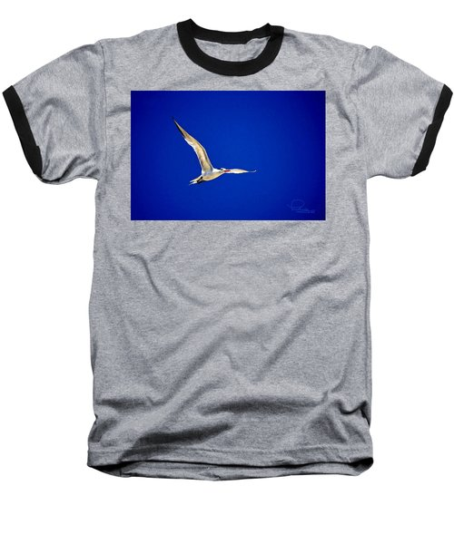 Baseball T-Shirt featuring the photograph Royal Tern 2 by Ludwig Keck