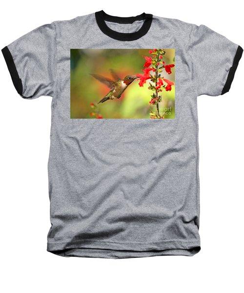 Ruby Throat Hummingbird Photo Baseball T-Shirt by Luana K Perez