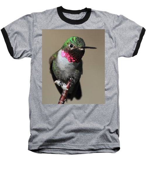 Ruby-throated Hummer Baseball T-Shirt