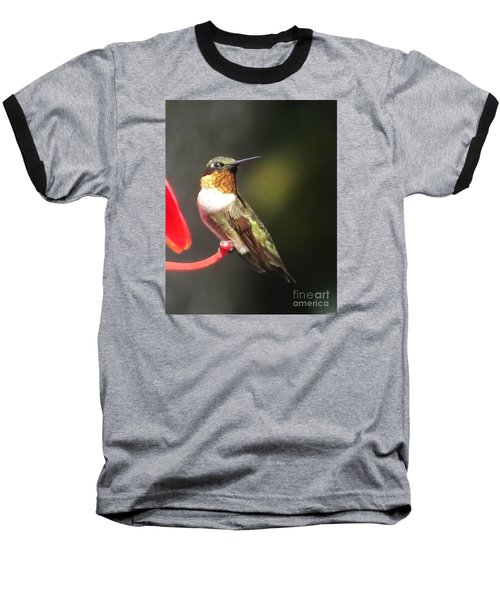 Ruby Throated Hummingbird 2 Baseball T-Shirt