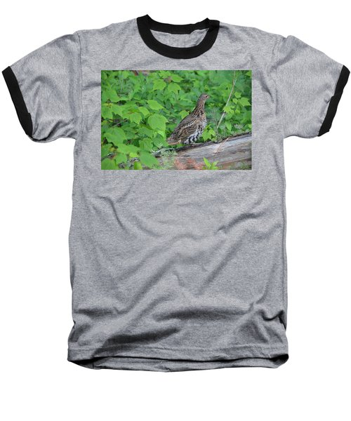 Baseball T-Shirt featuring the photograph Ruffed Grouse by James Petersen