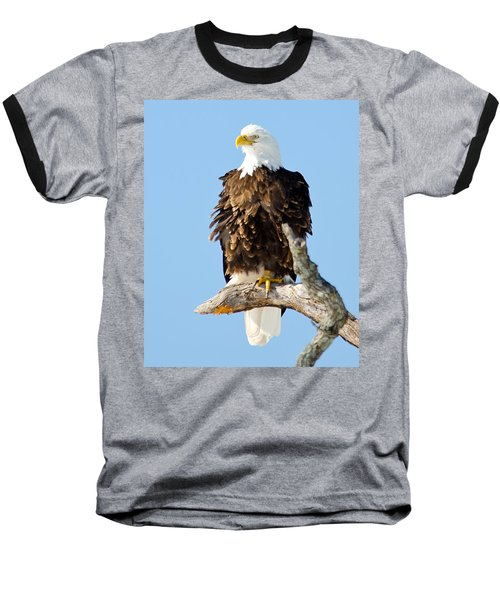 Ruffled Eagle Baseball T-Shirt