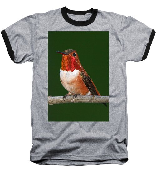 Rufous Hummingbird Baseball T-Shirt