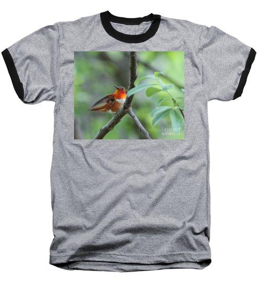 Rufus Hummingbird Baseball T-Shirt