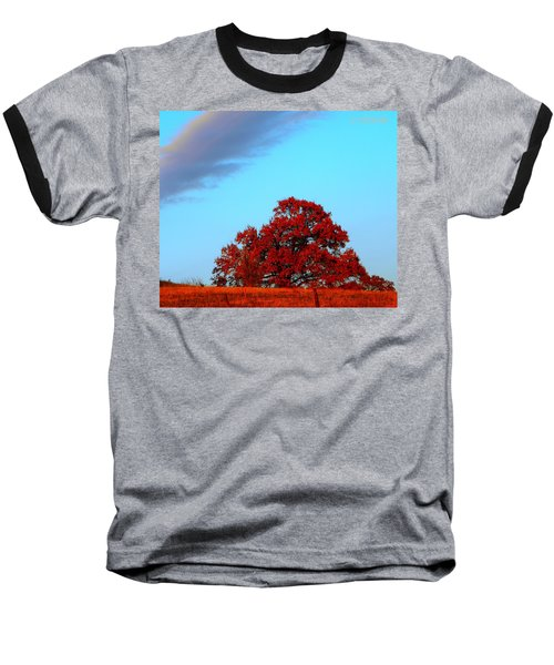 Rural Route Baseball T-Shirt by Chris Berry