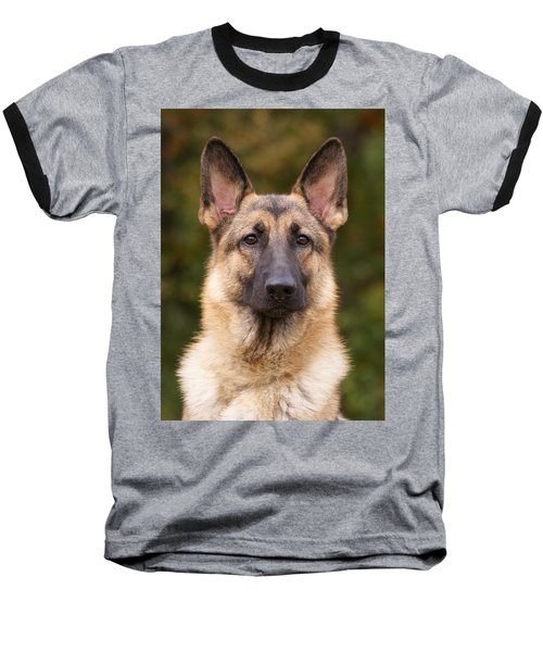 Sable German Shepherd Dog Baseball T-Shirt