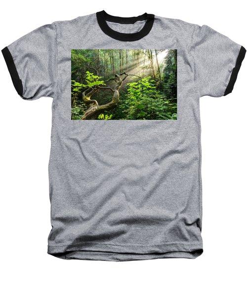 Sacred Grove Baseball T-Shirt