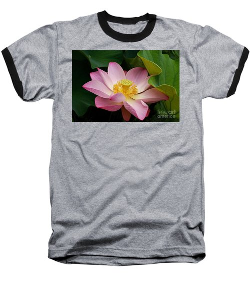 Sacred Lotus Baseball T-Shirt