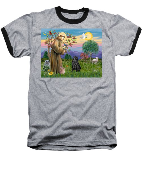 Saint Francis Blesses A Black Chinese Shar Pei Baseball T-Shirt
