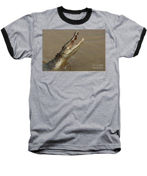 Salt Water Crocodile Australia Baseball T-Shirt by Bob Christopher